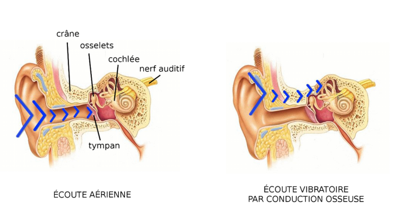 Source : http://www.happyzik.com/blog/mini-guide/comment-fonctionnent-les-casques-a-conduction-osseuse.html