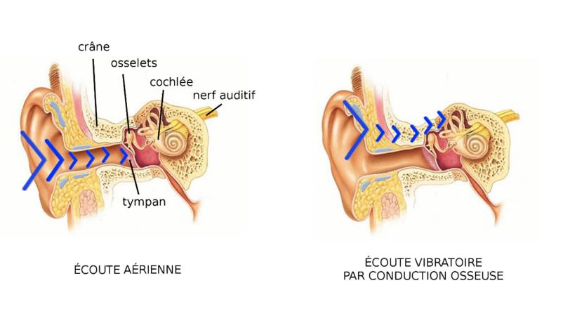 Source : http://www.happyzik.com/blog/mini-guide/comment-fonctionnent-les-casques-a-conduction-osseuse.html